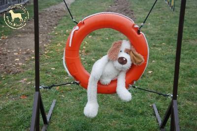 """""""Co można z psami robić przez 5 godzin?"""" …a można ;)"""