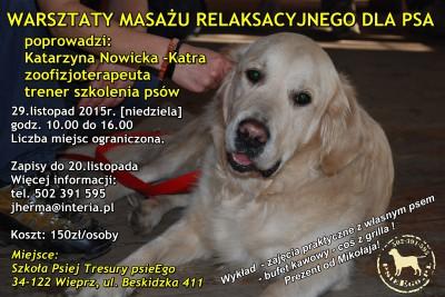 Warsztaty masażu relaksacyjnego dla psów.