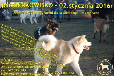 psieBerkowisko dla małych i dużych czworonogów!