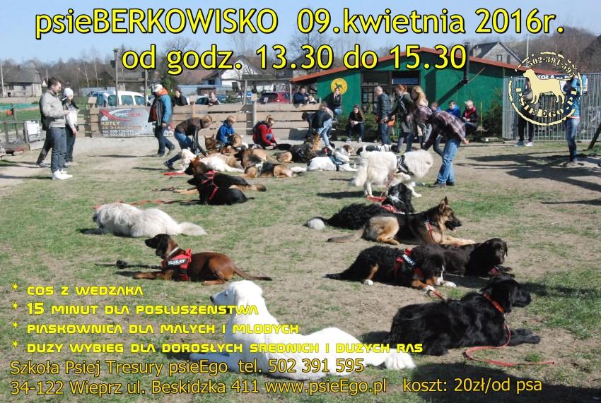 psieBERKOWISKO 09.04.16