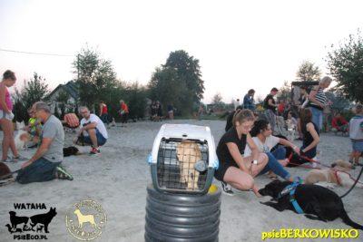 psieBERKOWISKO – pies i KOT