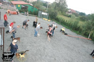 psieBERKOWISKO