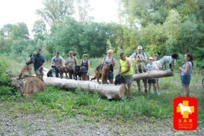 SAR Dog Training – cieki wodne