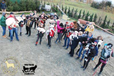 psieBERKOWISKO 11-11-17