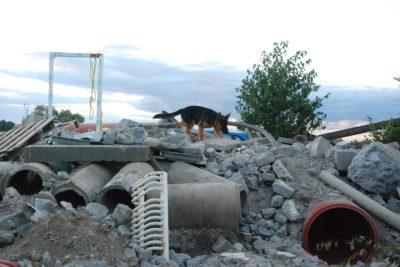 Projekt budowy POLIGONU dla zespołów ratowniczych uzyskał rekomendacje!