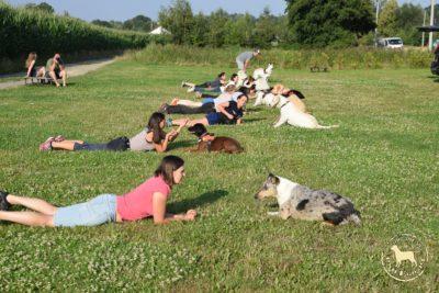 Grupowy Trening Relacji psieEgo