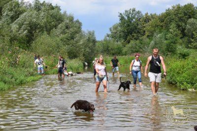 psieBERKOWISKO korytem rzeki Wieprzówki