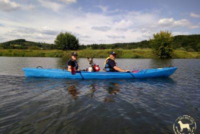 Spływ kajakowy z psami rzeką Wisłą.