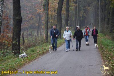 Światowy Dzień Marszu z Ośrodkiem Kultury w Brzeszczach.