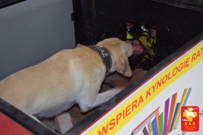 SAR Dog Training z Ochotnicza Straż Pożarna Ratownictwo Wodne