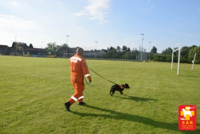 Search & Rescue Dog Training LINKA