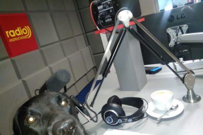 """Audycja kynologiczna w Radio Andrychów – """"Pies w naszej pracy""""."""