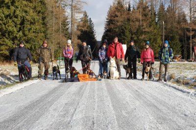 Dog Trekking Dolina Chochołowską.