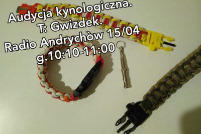 """Audycja archiwalna pt.: """"GWIZDEK"""" – zapraszamy!"""