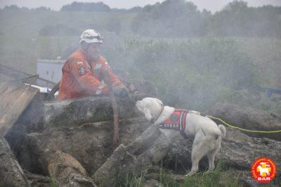 Grupa Poszukiwawczo-Ratownicza OSP Orzech & Search and Rescue DT.