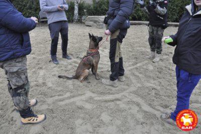 "Search & Rescue Dog Training ""BURZA"""